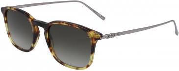 Salvatore Ferragamo SF2846S sunglasses in Dark Tortoise