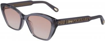 Chloé CE760S sunglasses in Grey