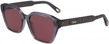 Chloé CE759S sunglasses in Grey