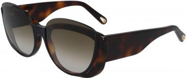 Chloé CE754S sunglasses in Black/Havana