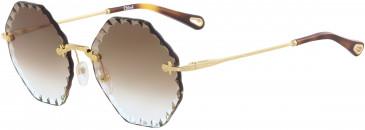 Chloé CE143S sunglasses in Gold/Blue Nude