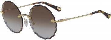 Chloé CE142S sunglasses in Gold/Gradient Brown