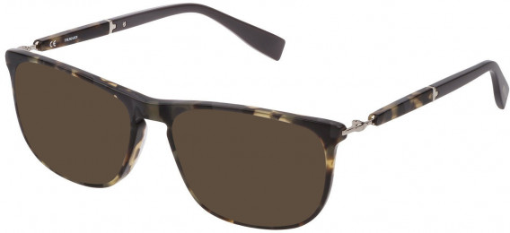 Trussardi VTR352 sunglasses in Pattern Light Havana-Grey