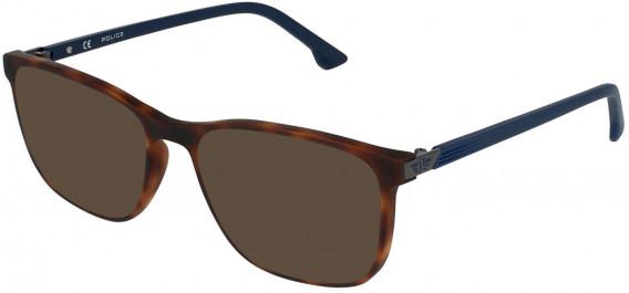 Police VPL952 sunglasses in Avana Scura
