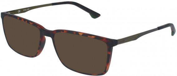 Police VPL949 sunglasses in Avana Scura