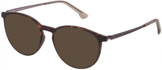 Police VPL800 sunglasses in Matt Dark Havana