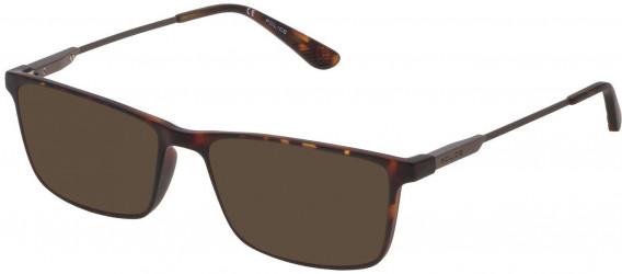 Police VPL696 sunglasses in Matt Dark Havana