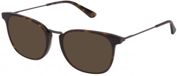 Police VPL686 sunglasses in Shiny Dark Havana