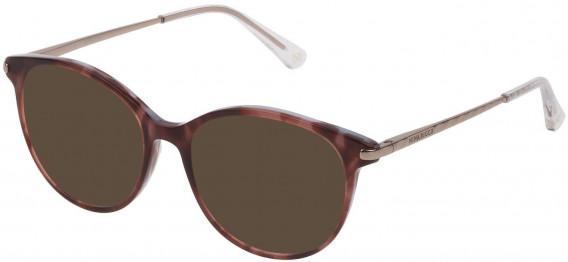 Nina Ricci VNR229 sunglasses in Top Transparent Burgundy/Light Blue Hava