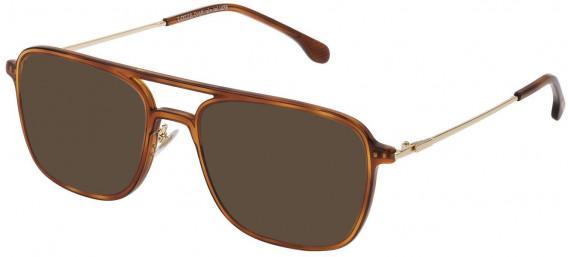 Lozza VL4213 sunglasses in Shiny Brown Havana