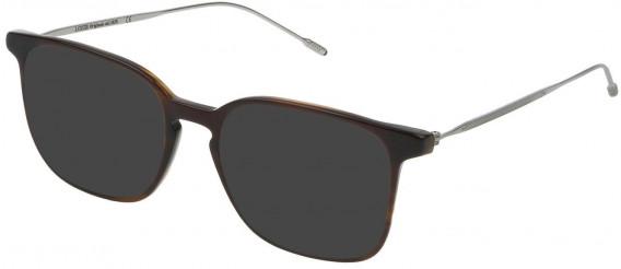 Lozza VL4171 sunglasses in Shiny Olive Brown/Striped Brown