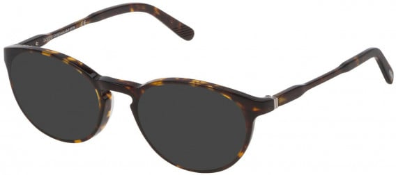 Lozza VL4169 sunglasses in Shiny Dark Havana