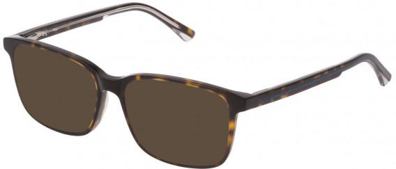 Fila VF9321 sunglasses in Shiny Dark Havana
