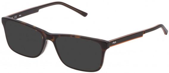 Fila VF9275 sunglasses in Shiny Middle Havana