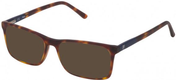 Fila VF9171 sunglasses in Shiny Havana