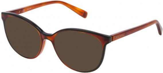 Escada VESA14 sunglasses in Black/Havana