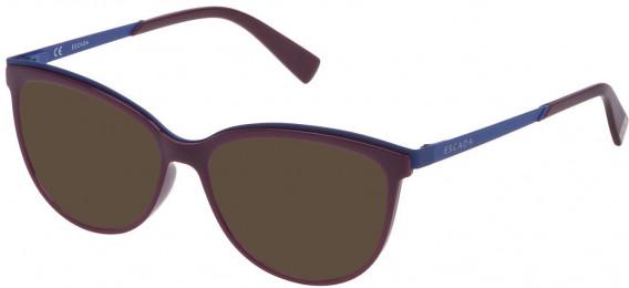 Escada VES945 sunglasses in Shiny Plum