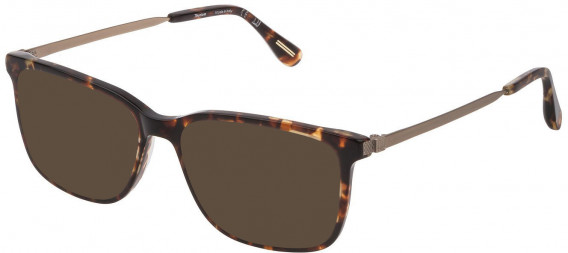 Dunhill VDH161M sunglasses in Shiny Classic Havana