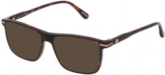 Dunhill VDH142 sunglasses in Shiny Dark Havana