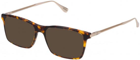 Dunhill VDH085 sunglasses in Shiny Classic Havana