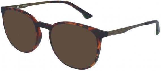 Police VPL950 sunglasses in Avana Scura