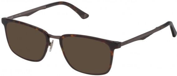 Police VPL684 sunglasses in Havana Revival