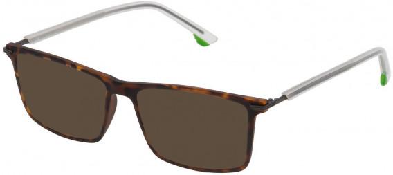 Police VPL559 sunglasses in Matt Dark Havana