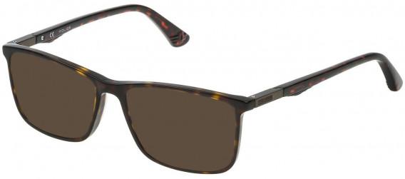 Police VPL393 sunglasses in Shiny Dark Havana