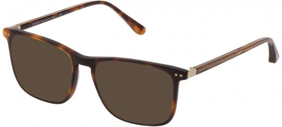 Lozza VL4221 sunglasses in Shiny Dark Havana