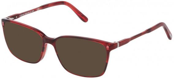 Lozza VL4203 sunglasses in Shiny Havana Striped Red