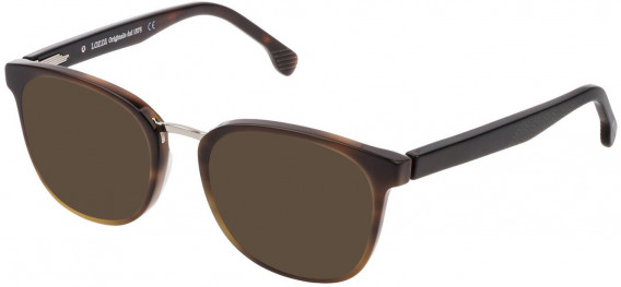 Lozza VL4176 sunglasses in Shiny Brown/Yellow Havana
