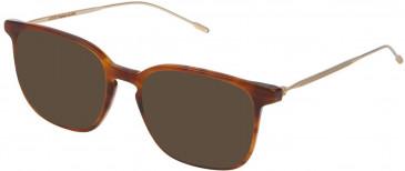 Lozza VL4171 sunglasses in Shiny Brown Top/Striped Honey