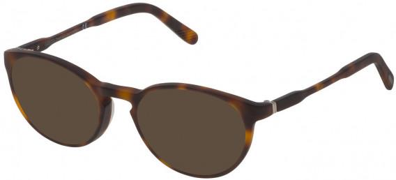 Lozza VL4169 sunglasses in Havana Brown