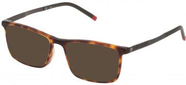 Fila VF9242 sunglasses in Shiny Havana