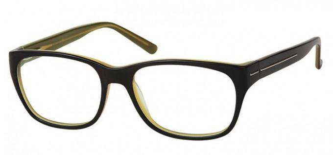 SFE Plastic Ready-Made Reading Glasses