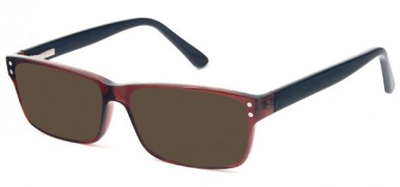 SFE-10575 sunglasses in Brown/Black