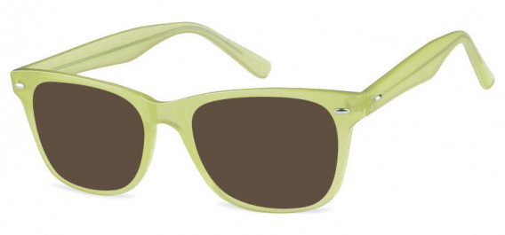 SFE-10573 sunglasses in Clear Olive