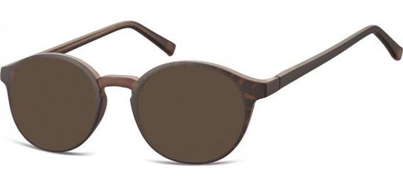 SFE-10544 sunglasses in Turtle/Brown