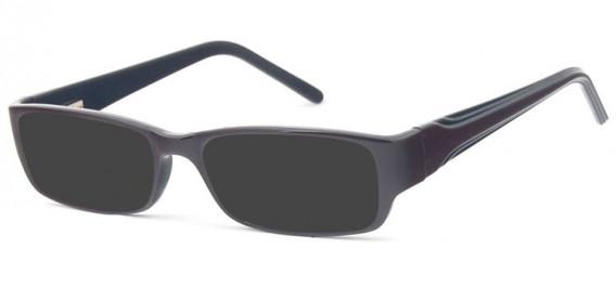 SFE-10578 sunglasses in Brown/Black