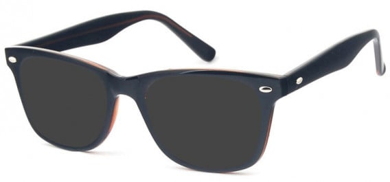 SFE-10574 sunglasses in Black/Brown
