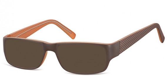 SFE-10562 sunglasses in Brown/Light Brown