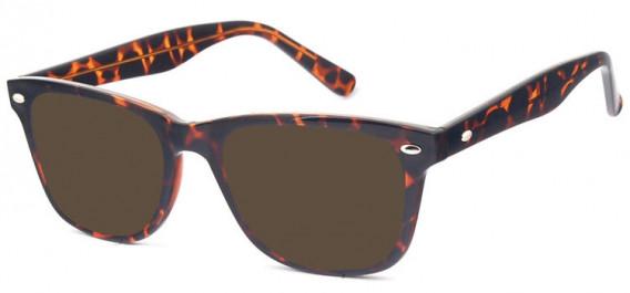 SFE-10574 sunglasses in Demi