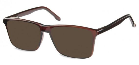SFE-10572 sunglasses in Shiny Dark Brown