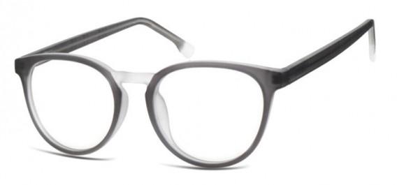 SFE-10533 glasses in Grey/Transparent
