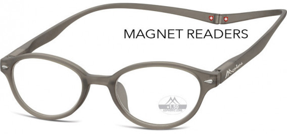 SFE-10587 glasses in Grey