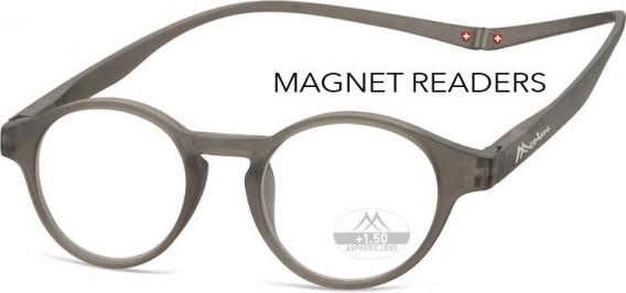 SFE-10586 glasses in Grey