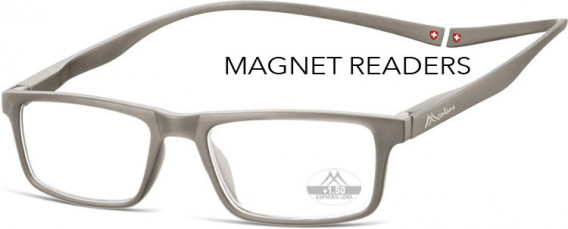SFE-10585 glasses in Grey