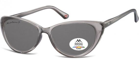 SFE-10617 sunglasses in Transparent Grey/Smoke Lenses
