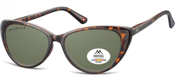 SFE-10617 sunglasses in Turtle/G15 Lenses