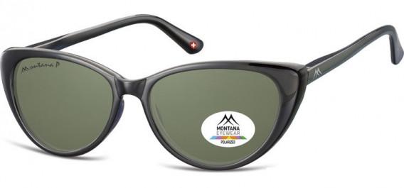 SFE-10617 sunglasses in Black/G15 Lenses